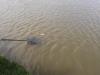 Tavaszi horgászat 025