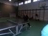 Asztalitenisz2014 032