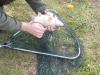 Tavaszi horgászat 017